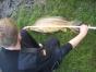 koenigsfischen-26-06-2010-006
