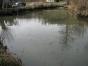 gv-22-02-2008-003
