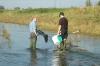 hochwasser-2005-011
