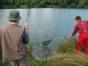 koenigsfischen-2008-062