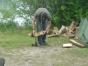 jugendzeltlager-2008-260