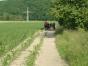 jugendzeltlager-2009-041