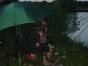 jugendzeltlager-2009-077
